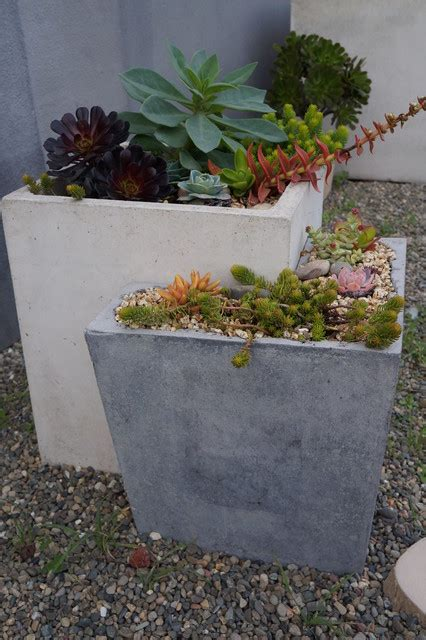 concrete planters traditional san francisco by