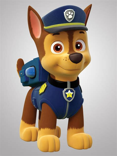 paw patrol characters paw patrol marshall and paw patrol badge characters paw patrol wiki