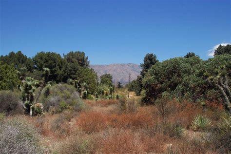 Claremont Botanical Gardens Claremont Botanical Garden Rancho Santa Botanic Garden Flickr The Rancho Santa Botanic Garden