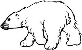 coloring page for black bear search