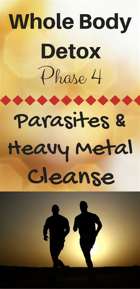 Pregnancy And Heavy Metal Detox by Best 25 Parasite Cleanse Ideas On Parasite