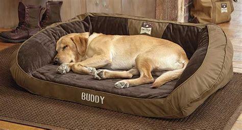 letto per cani grandi i 5 migliori lettini per cani classifica 2019