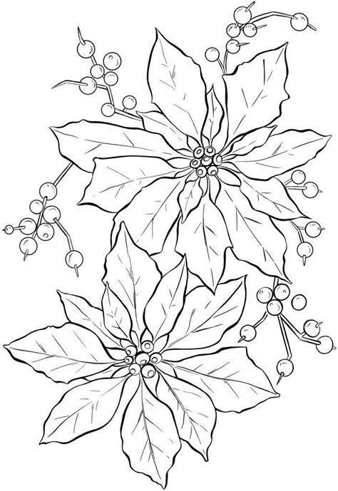 poinsettia tattoo 32 best poinsettia drawings images on
