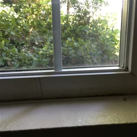 Apartment Windows Mold Bay Court At Harbour Pointe 49 Photos 10 Reviews