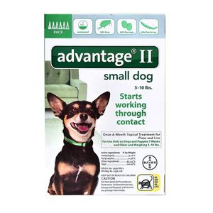 advantage for dogs 10 lbs 6 pack advantage ii for dogs 1 10 lbs 6 month green supply vetdepot