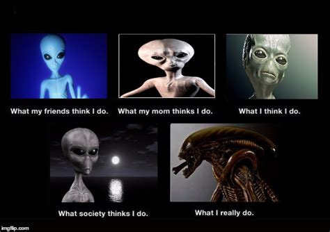 What I Actually Do Meme - aliens misunderstood imgflip