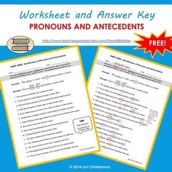 Pronouns And Their Antecedents Worksheet by Pronoun Antecedent Identification Worksheet By Bibliofiles