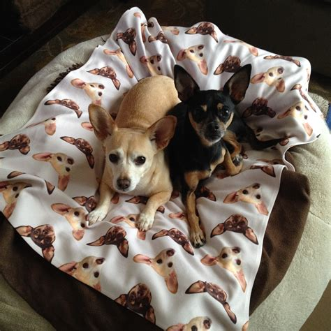 Blankets With Dogs On Them by Baby Blankets Blankets Zazzle