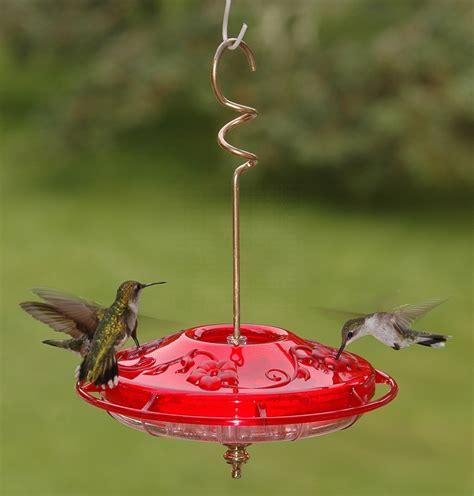 hummzinger fancy rose 12 oz hummingbird feeder