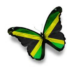 United States Of America National Flower - pics photos related pictures free flag jamaica