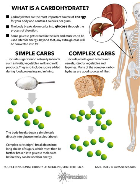 carbohydrates are broken into diet and weight loss the best ways to eat