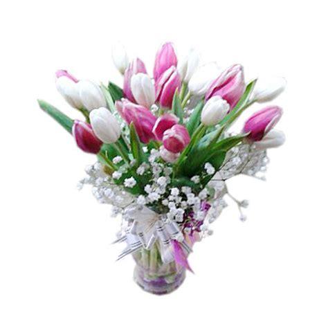 Harga Vas Bunga Gambar gambar bunga tulip putih