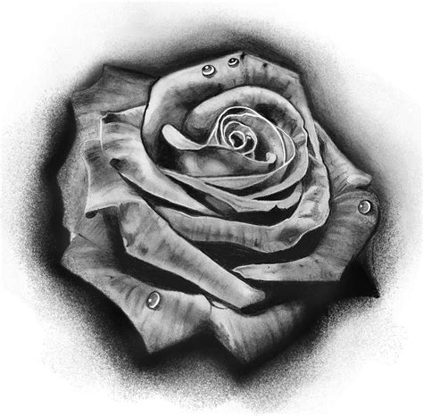 black and grey rose tattoo meaning stencils www pixshark images galleries