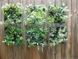 Indoor Vertical Succulent Garden Succulents Vertical Garden Florida Friendly Plants