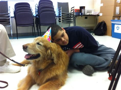 dogs for therapy held for retiring therapy that works with autistic children in berwyn 171 cbs