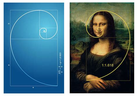 Mathematics And Nature The Golden Ratio And Fibonacci