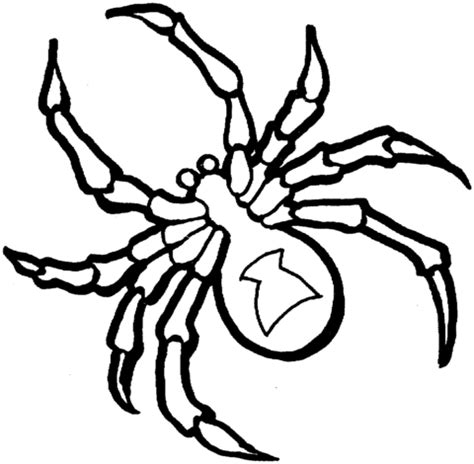 black spider coloring page black widow spider coloring page free printable coloring