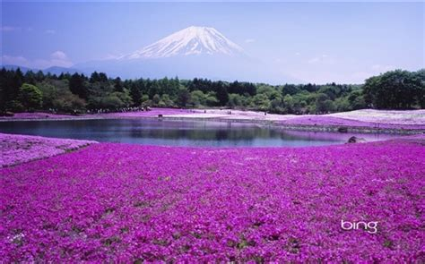 themes for windows 7 japan bing s best japan windows 7 theme wallpapers all free
