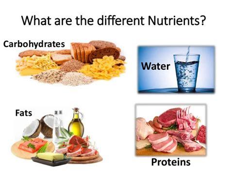 protein nutrients nutrients