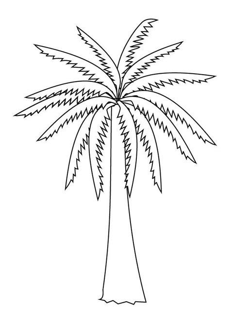 date tree coloring page kleurplaat palmboom afb 9879