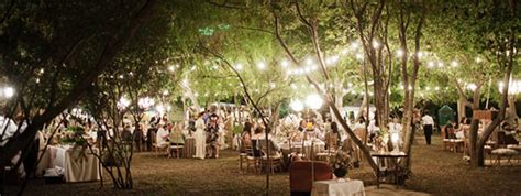 outdoor party san antonio outdoor event lighting the perfect light
