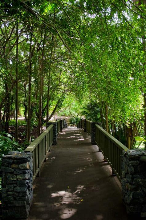 Botanical Gardens Mount Coot Tha Mount Coot Tha Botanic Gardens Brisbane