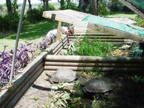 Backyard Turtle Habitat How To Build A Basic Outdoor Tortoise Pen