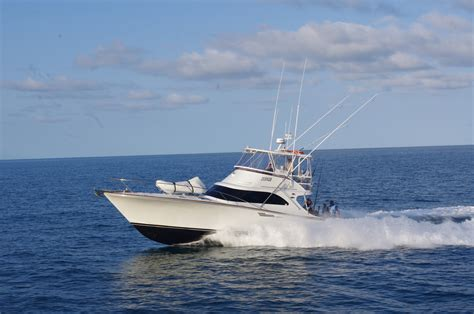 what charter boat fishing charters mackay qld zulu game fishing charters cairns tourism town find