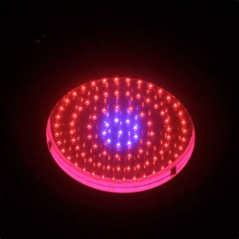 led grow light spectrum spectrum led grow lights plantozoid com