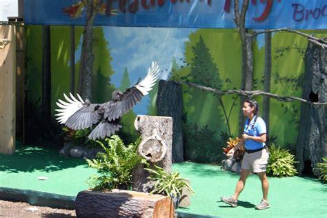 wild encounters at brookfield zoo kidlist activities