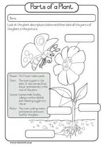 lable a flower worksheet flowers are flowering