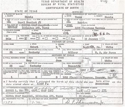 what does birth certificate look like what does birth certificate look like birth cert sle