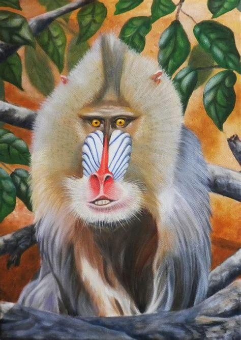 monkey painting mandrill monkey painting by hauk