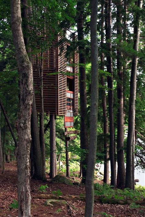 incredible houses 17 of the most amazing treehouses from around the world