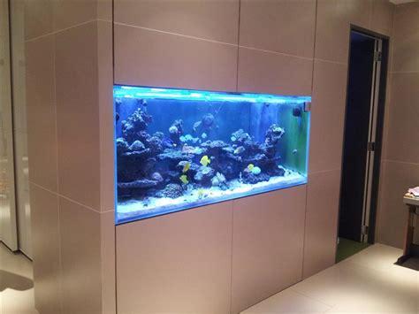 wall aquarium salt water wall aquariums aquarium design ideas