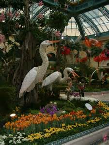 file bellagio indoor flower garden jpg wikimedia commons