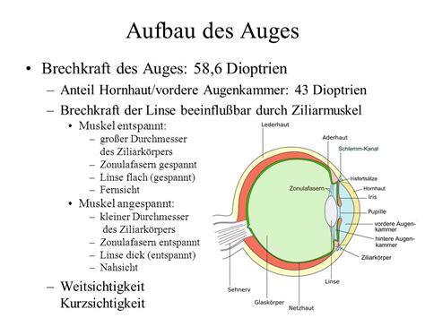 weitsichtigkeit dioptrien tabelle vorlesung christian kaernbach ppt herunterladen