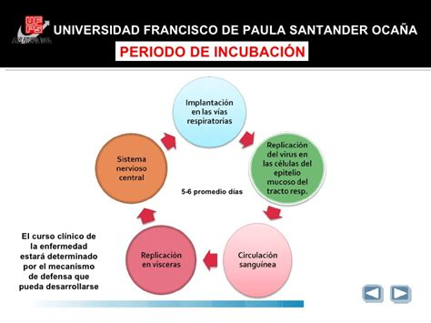 cadena epidemiologica paperas newcastle