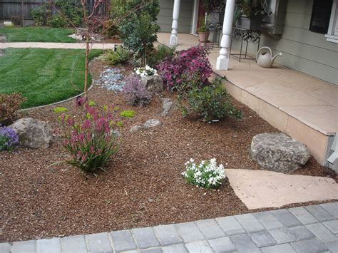 backyard ground cover ideas drought resistant landscaping ideas affordable drought