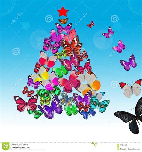 imagenes mariposas navidad tarjeta de navidad colorida de la mariposa foto de archivo