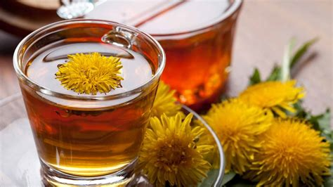 Dandelion Detox For Liver by How To Cleanse Detox Your Kidneys Naturally 7 Best Foods