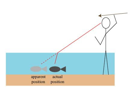 optics basics refraction skulls in the