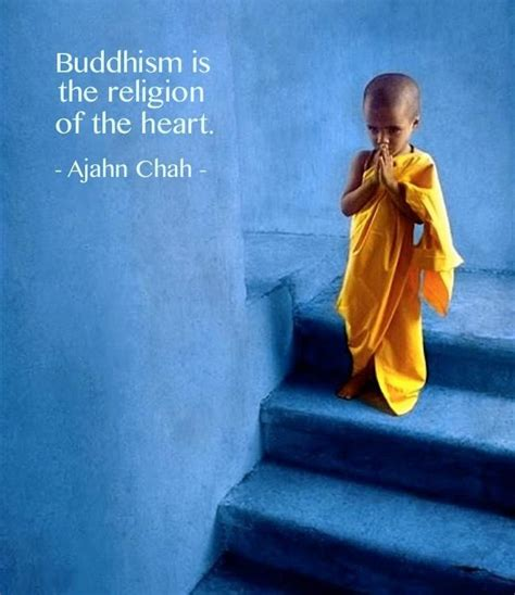 the dharma of modern mindfulness discovering the buddhist teachings at the of mindfulness based stress reduction books 17 best ideas about buddhist meditation on