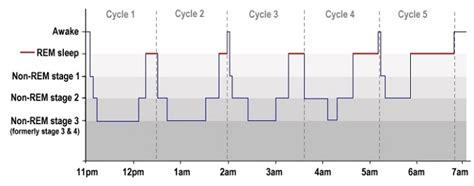 typical sleep pattern 2 year old sleep cycle how sleep works