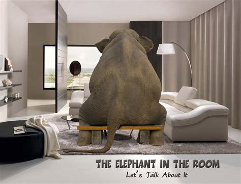 what does the elephant in the room addressing the elephant in the room secswithmclean
