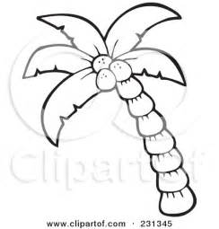 printable coconut tree template 4 best images of printable coconut outline coconut tree