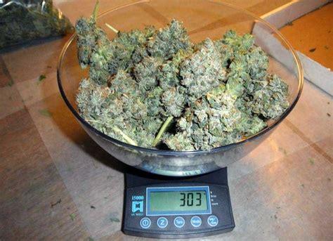 Diabetasol 600 Gr 30 Gram Termurah Original how to produce 1 gram watt of cannabis from your grow light grow easy