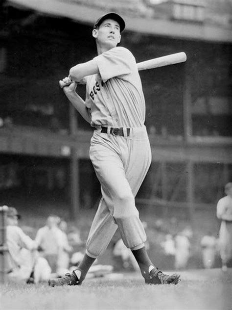 ted williams swing ted williams red sox swing baseball sport 24x18 poster