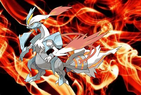black and white kyurem wallpaper white kyurem with red fire background by tigergal15 on