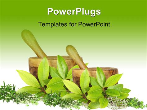 herb powerpoint themes powerpoint template fresh herb selection of rosemary